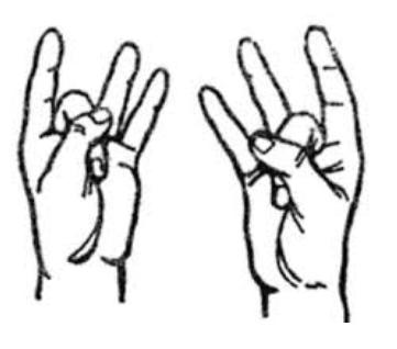 I benefici dei mudra: Shoonya Mudra è utile in caso di dolore all'orecchio