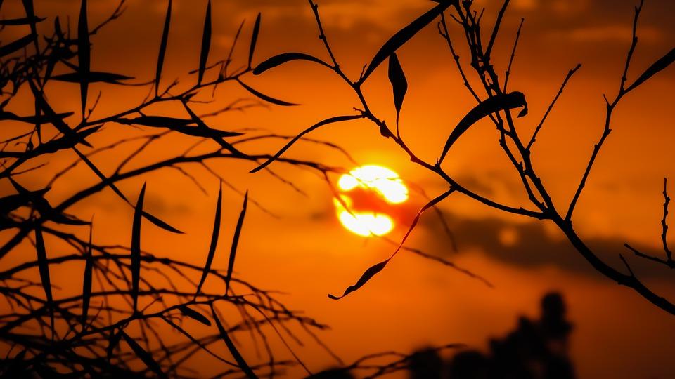 Manipura, il chakra del plesso solare